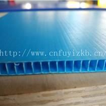 佛山中空板|佛山塑料中空板|阻燃中空板
