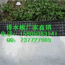 供應南昌建筑綠化排水板車庫花園排水板