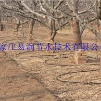 广西稳流器|果树水管高效节水设备