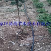 定安县稳流器|果树水管高效节水设备