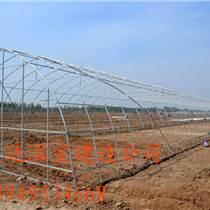 怎樣建設蔬菜大棚建一畝地多少錢