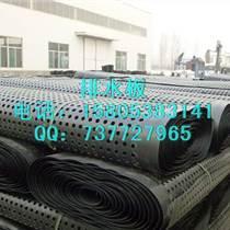 排水板/濾水板/塑料夾層板綠化排水板廠家直銷