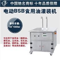 济南电动BSB食用油灌装机 双头纯电动灌装范围广调节方便小