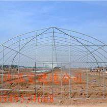 供应草莓大棚建造类型种植大棚建造中心