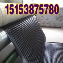 承德地下车库排水板;承德种植绿化滤水板
