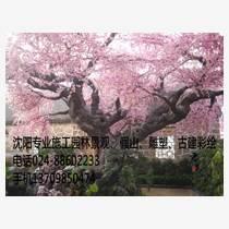 沈陽假山假樹雕塑哪家專業