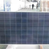 鑫泰萊300W多晶太陽能電池板 300w多晶太陽能電池組件