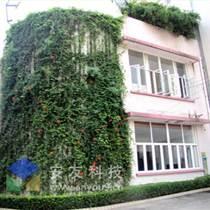 湖北立体绿化墙花盆、植物墙、绿化墙花盆价格