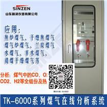 煤气发生炉氧气分析仪