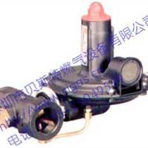 意大利减压阀/ TARTARINI调压器/B242 B242-AP B249 B249-AP调压器/