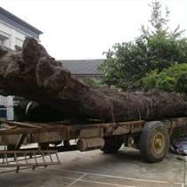 哪有厂商收购虎皮纹金丝楠木