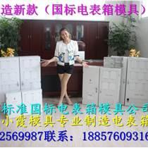 注塑模具供應商 雙相塑膠電表箱模具 6表電表箱模具制造
