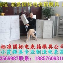 塑料模國網標準單相十二位電表箱注塑模具中國廠