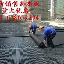 屋頂綠化排水板 屋面種植排水板 邵陽排水板廠家