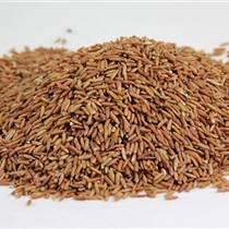 南京豆浆原料、东旭粮油 现磨豆浆加盟、豆浆原料批发