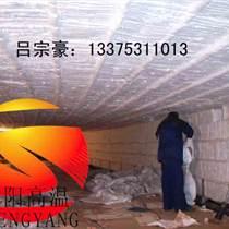 隧道窯保溫廠家 隧道窯保溫用耐火棉 濟南盛陽火爆銷售中