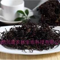 薇菜水煮薇菜出口加工貿易