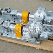 滄州其他螺桿泵供應廠家直銷