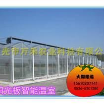 pc板智能溫室-壽光市萬禾農業