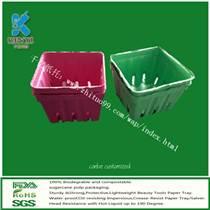 甘蔗浆高品质爽肤水纸盒厂家,推荐千亿纸内托生产!
