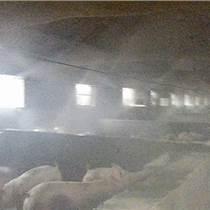 养猪舍降温消毒设备