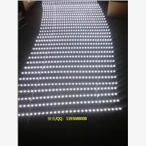 金城亮光电超亮5730卷帘式卡布灯条拉布灯条工厂批发找灯箱灯条生产厂家金城亮光电