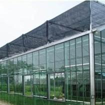 新疆樱桃温室、新疆温室秒速赛车、新疆温室大棚