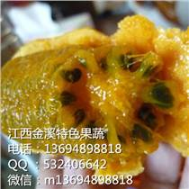 金溪供应九月黄金蕉种子 种苗
