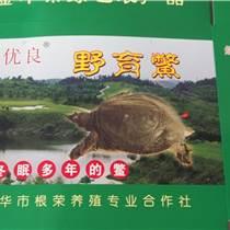 土泥鳅批发价,嘉兴土泥鳅,沈根荣常年出售(查看)