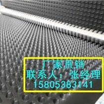 【推薦】塊狀排水板天津屋頂綠化蓄排水板土工布