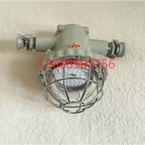24W隔爆型巷道燈 DGDS24/127L(B)LED照明燈