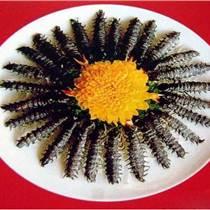渦陽土元養殖優質卵鞘