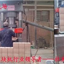 国内一流的舔盐压块机设备L生产效率高
