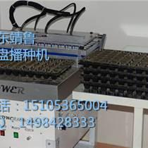 GB-601型整盤式穴盤播種機 育苗播種機