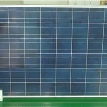 鑫泰萊260W多晶硅太陽能電池板壽命25年高效率組件