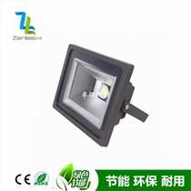 Zenlea珍領 ZL-FL30-JG COB30W 投光燈