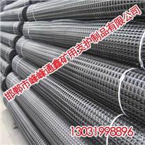 礦用塑料網丨礦用塑料網直銷價格丨通鑫礦用支護