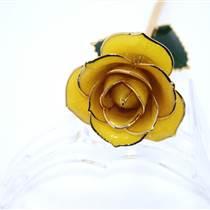 黛雅母親節精選禮物 鍍金玫瑰花黃色 包郵