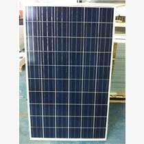 供應廠家直銷265W高效多晶太陽能電池板