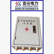 BTTZ礦物電纜分支箱 BTTZ電纜分支 YTTW電纜分支