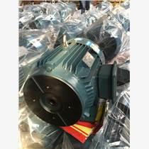配PV2R1叶片泵专用油泵电机