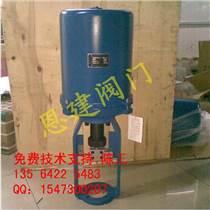 王中王,361LSA-08电动执行器