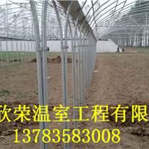 開封簡易連體大棚建造技術草莓大棚建設規格