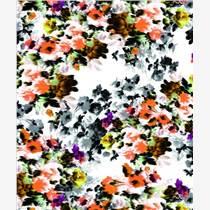 神彩慧數碼印花面料棉針織布PH-H13432