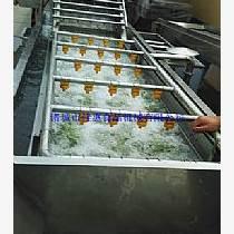 果蔬清洗設備 臭氧清洗機哪家專業