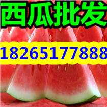 【油桃】现在山东油桃最新价格