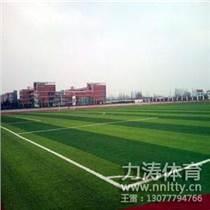 批发广西区足球场专用草坪,绿色环保,售后保障