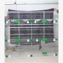 買鴿子籠找佳久   鴿子籠圖片  價格