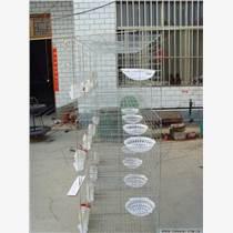 買鴿子籠找佳久   鴿子養殖戶批發多層鴿子籠