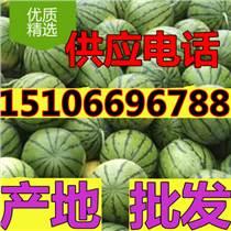 今日西瓜裝車價格3毛一斤